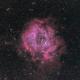The Rosette Nebula 、NGC 2237-9, 2246,                                sulafat