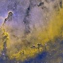 Elephant Trunk Nebula_IC1396,                                sydney
