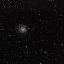 M101,                                Kenneth
