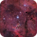 IC1396 Trompa del elefante,                                Raúl López