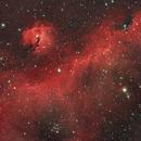Seagull Nebula IC2177,                                Scott Tucker