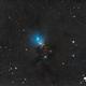 La nébuleuse NGC 1333 - Sadr Espagne,                                Julien Bourdette