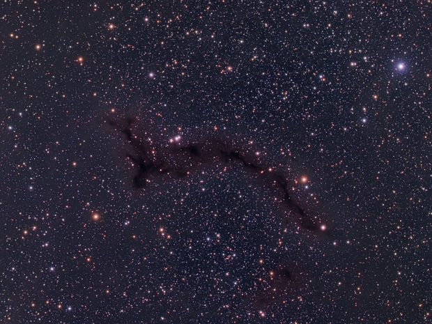 "B150 ""Seahorse"" Dark Nebula,                                Mark Eby"