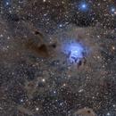 Iris Nebula NGC7023,                                  Rick Stevenson