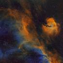 IC 2177 - Seagull Nebula Closeup (SHO),                                Kurt Zeppetello