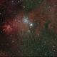 Cone Nebula and Xmas Tree cluster,                                Robin Clark - EAA...