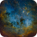 IC 410 (Hubble Palette with RGB stars),                                Miles Zhou