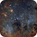 IC 410 - First colored light with the decollimated Simak 240,                                Salvatore Iovene