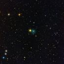 cometa C/2018 Y1 Iwamoto,                                Rolando Ligustri
