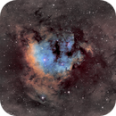 NGC 7822 - SH2-171,                                Renaud - Olivier Coppe