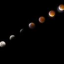 Super Blood Wolf Moon Eclipse Collage,                                Lee Morgan