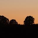 Evening Sky Challenge - Mercury at Sunset,                                elbee