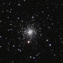NGC 6934,                                Gary Imm