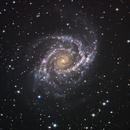 NGC 2997,                                Mark