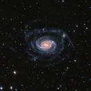 NGC 289 - 70 million light-years away,                                Terry Robison