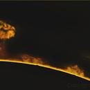 Sun Ha - Prominences - 2016_09_11,                                Stephan Reinhold