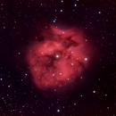 IC 5146 (Cocoon nebula) in HaLRGB,                                Michael J. Mangieri
