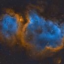 Soul Nebula with TEC140,                                Alex Pinkin