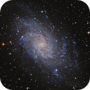 M33,                                Zyklop
