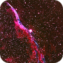 The Western Veil Nebula, NGC 6960,                                Tam Rich