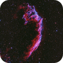 NGC 6992 - the Network Nebula or East Veil  Ha(O(III))RGB,                                bobzeq25