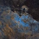 Eagle Nebula (M 16),                                Sasho Panov
