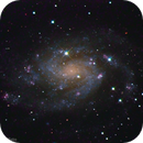 Spiral Galaxy NGC 300,                                Rodrigo Andolfato