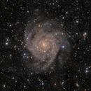 "IC342 ""The Hidden Galaxy"",                                Alex S."
