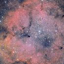 NGC 1396,                                Riccardo A. Balle...