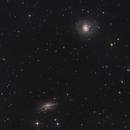 M77 and NGC 1055,                                Morris Yoder