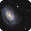 NGC4725 and neighbours,                                tommy_nawratil