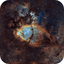 IC 1795 Fish Head Nebula,                                SCObservatory
