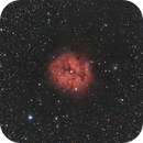 The Cocoon Nebula through L-eNhance,                                JohnAdastra