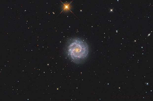 NGC 3184,                                Chris Sullivan