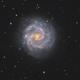 NGC 3184,                                Chris Sullivan