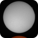 Sol 31-5-2020 Ha & Cak,                                Steve Ibbotson