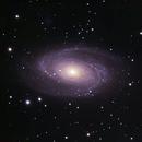 M81,                                Rick153