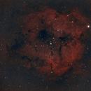 IC 1396 Region,                                Josh Woodward