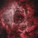 Rosette Nebula (NGC2244),                                Justin