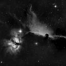Cabeza de caballo IC434,                                Abel