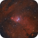 NGC2264, Wide field on Cone Nebula,                                Gianluca Galloni