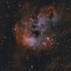 NGC 1893 and Emission Nebula IC 410,                                Nathan Morgan (nm...