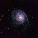 M101 RGB,                                Philippe Oros