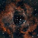 Rosette Nebula,                                Firstround