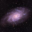 M 33 Triangulum Galaxy,                                Greg T.