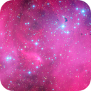 Running Chicken Nebula,                                Matt Dieterich