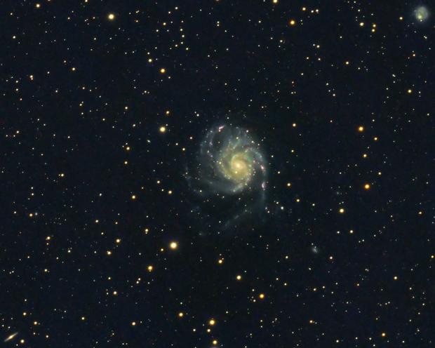 M101 Pinwheel Galaxy,                                Derek Foster