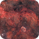 Crescent Nebula and Surroundings,                                Scott Tucker