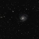 M101,                                Pierrick Roy