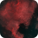 North American Nebula (NGC7000) HOO,                                Landon Boehm
